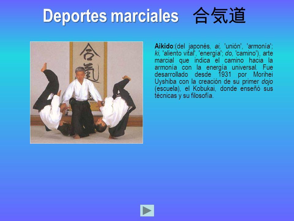 Deportes marciales 合気道