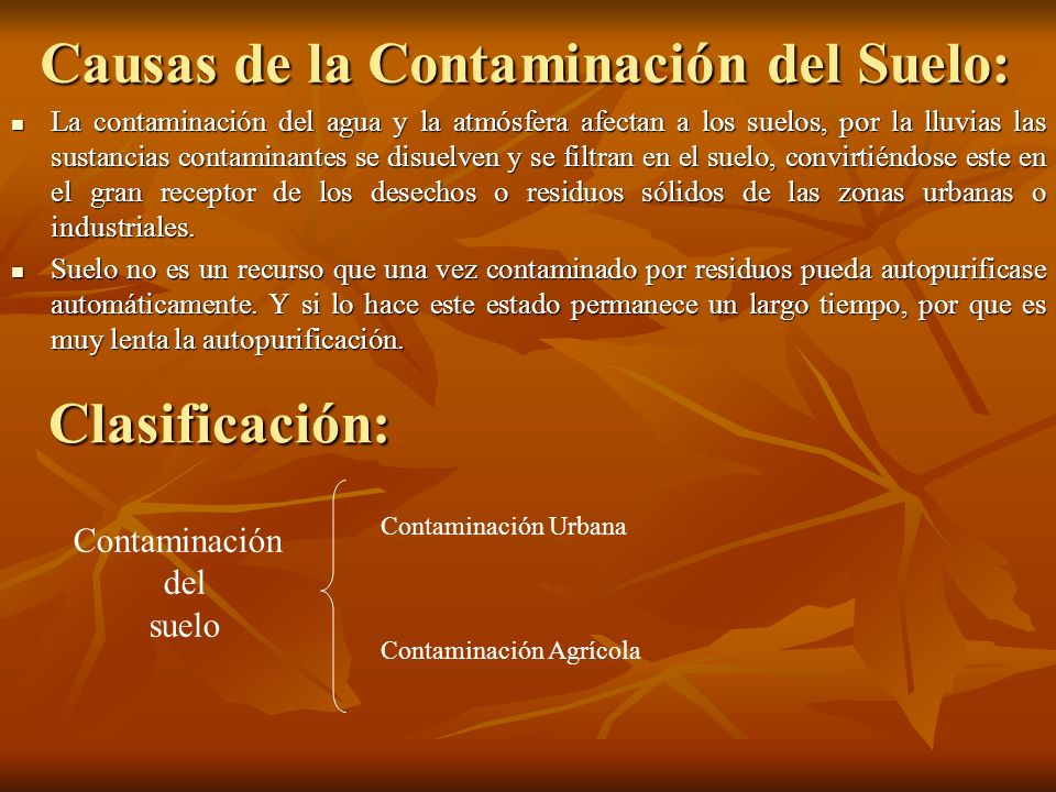 Causas de la Contaminación del Suelo: