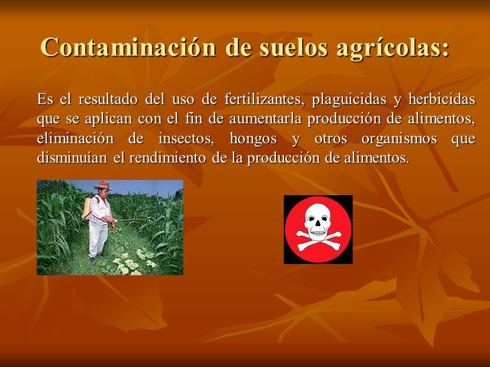 Contaminación de suelos agrícolas: