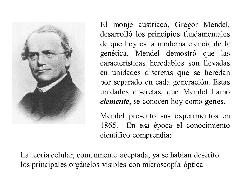 El monje austríaco, Gregor Mendel, desarrolló los principios fundamentales de que hoy es la moderna ciencia de la genética. Mendel demostró que las características heredables son llevadas en unidades discretas que se heredan por separado en cada generación. Estas unidades discretas, que Mendel llamó elemente, se conocen hoy como genes.