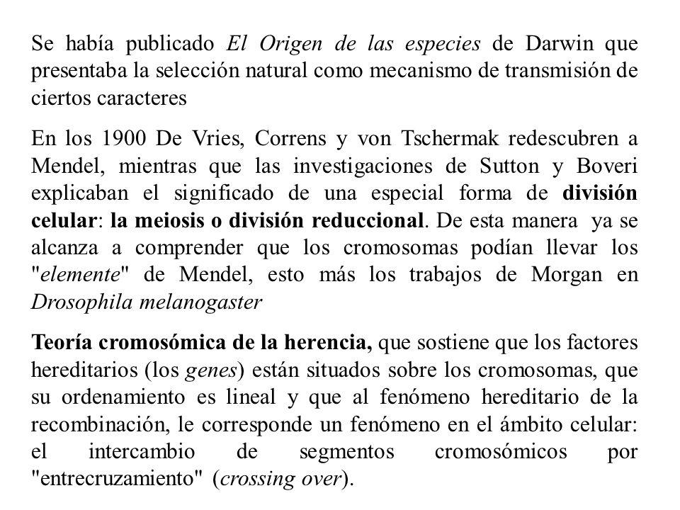 Se había publicado El Origen de las especies de Darwin que presentaba la selección natural como mecanismo de transmisión de ciertos caracteres