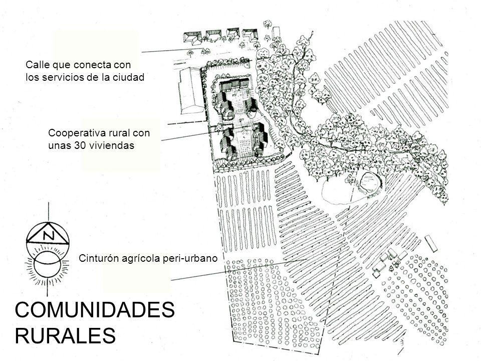 COMUNIDADES RURALES Calle que conecta con los servicios de la ciudad