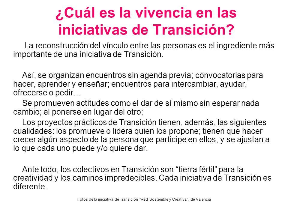 ¿Cuál es la vivencia en las iniciativas de Transición