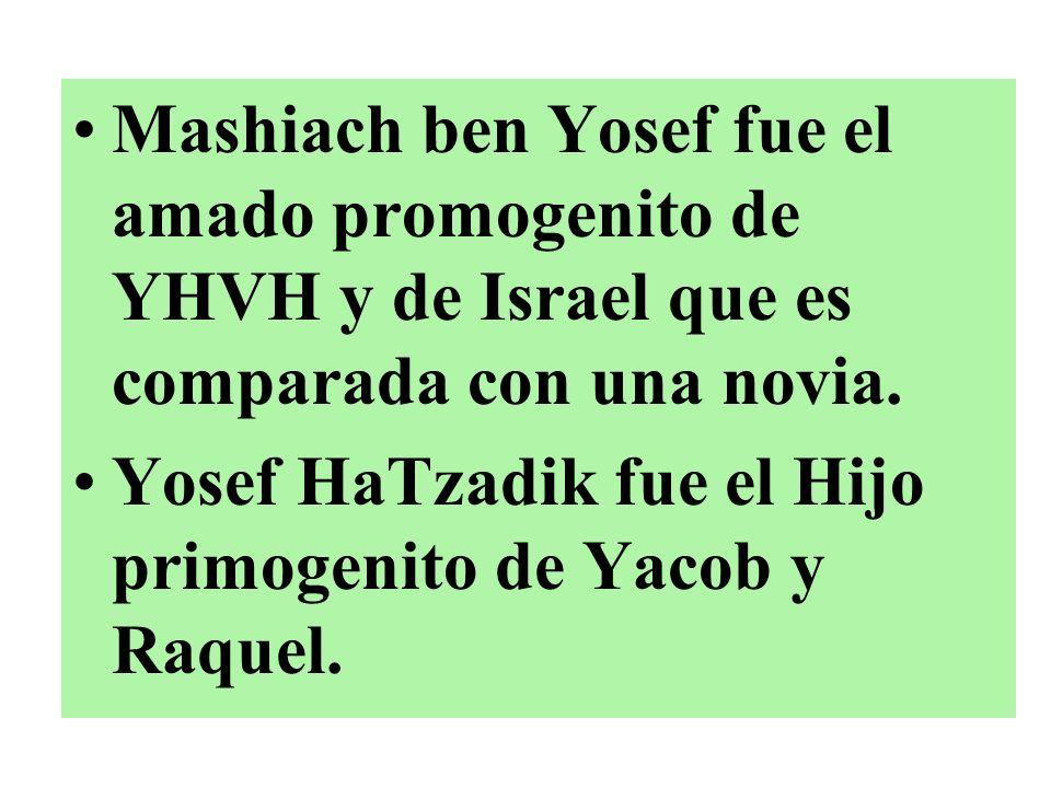 Mashiach ben Yosef fue el amado promogenito de YHVH y de Israel que es comparada con una novia.