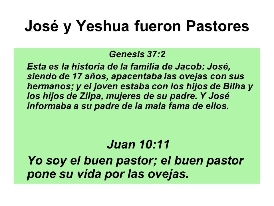 José y Yeshua fueron Pastores