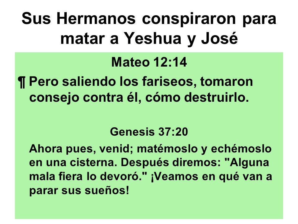 Sus Hermanos conspiraron para matar a Yeshua y José