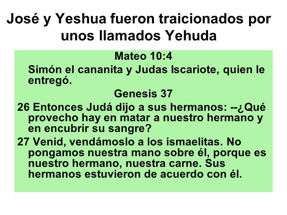 José y Yeshua fueron traicionados por unos llamados Yehuda