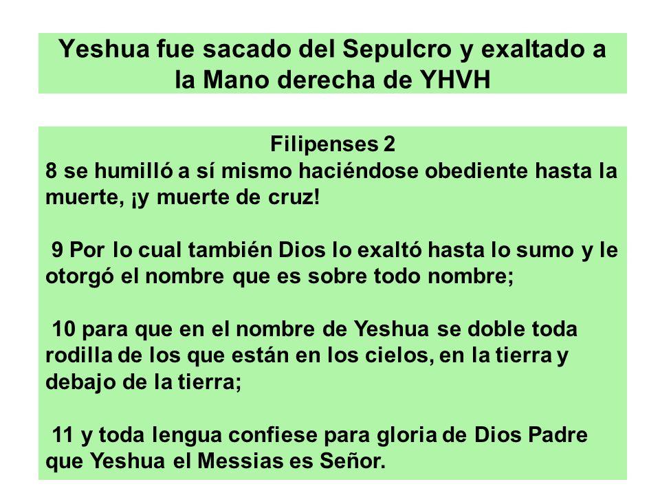Yeshua fue sacado del Sepulcro y exaltado a la Mano derecha de YHVH