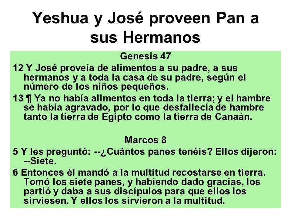 Yeshua y José proveen Pan a sus Hermanos