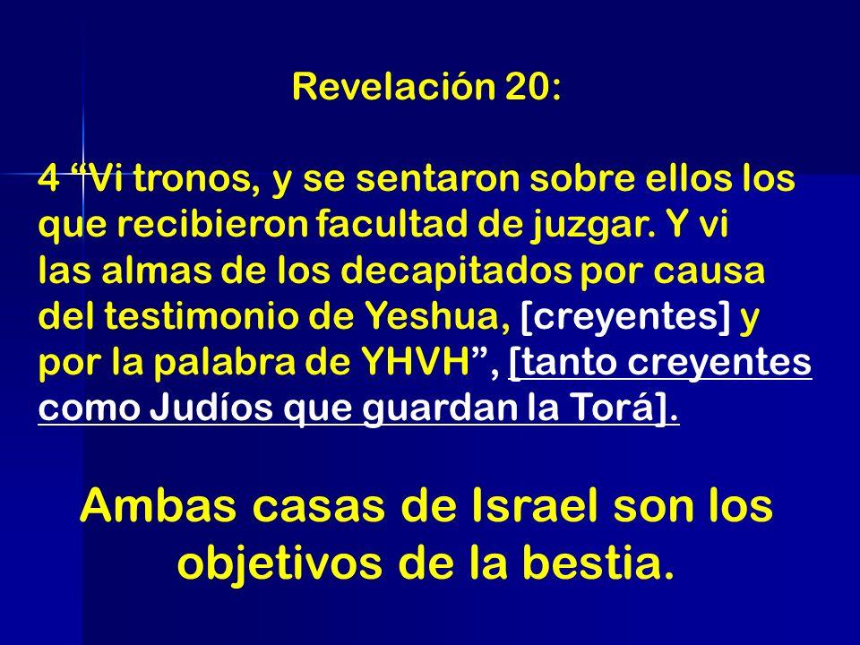 Ambas casas de Israel son los objetivos de la bestia.