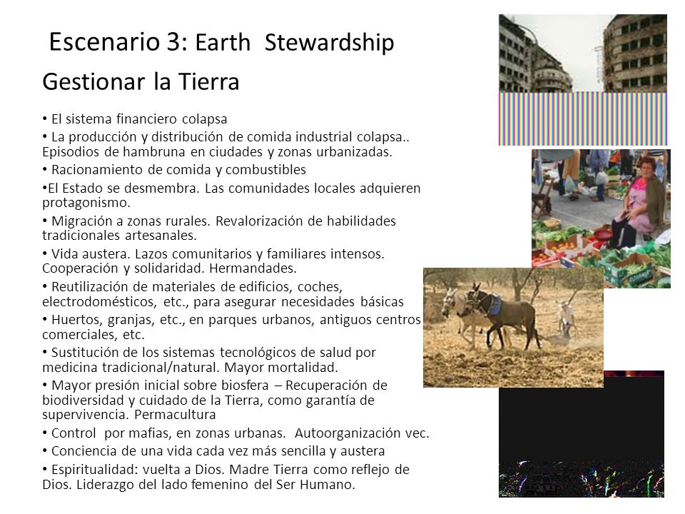 Escenario 3: Earth Stewardship