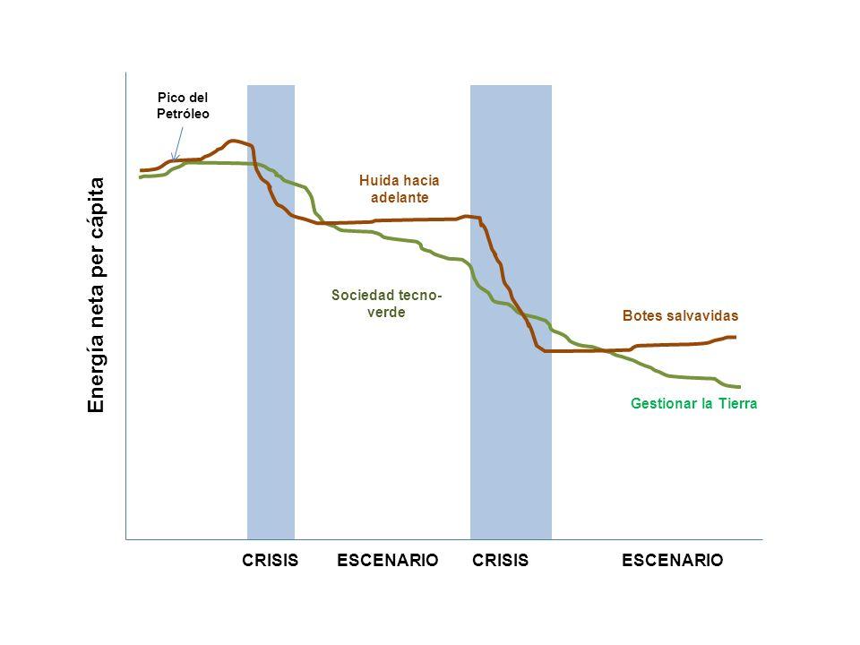 Energía neta per cápita