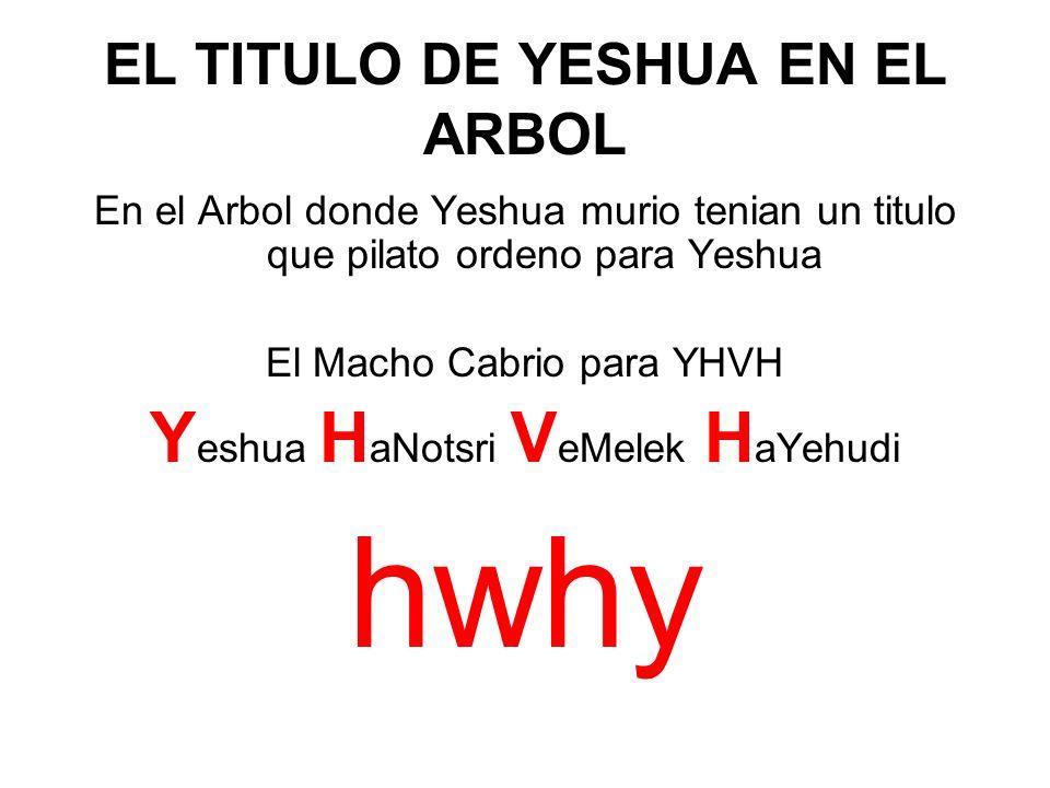 EL TITULO DE YESHUA EN EL ARBOL