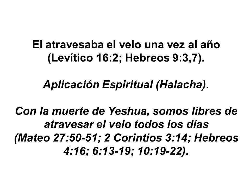 El atravesaba el velo una vez al año (Levítico 16:2; Hebreos 9:3,7).