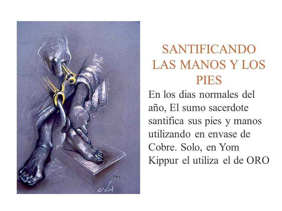 SANTIFICANDO LAS MANOS Y LOS PIES