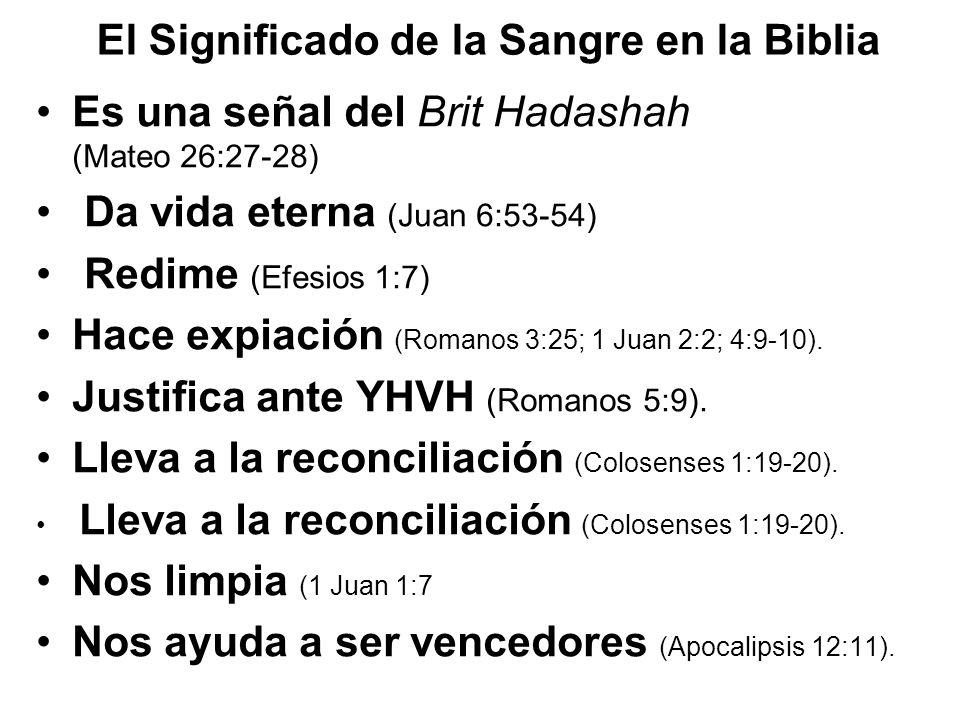 El Significado de la Sangre en la Biblia