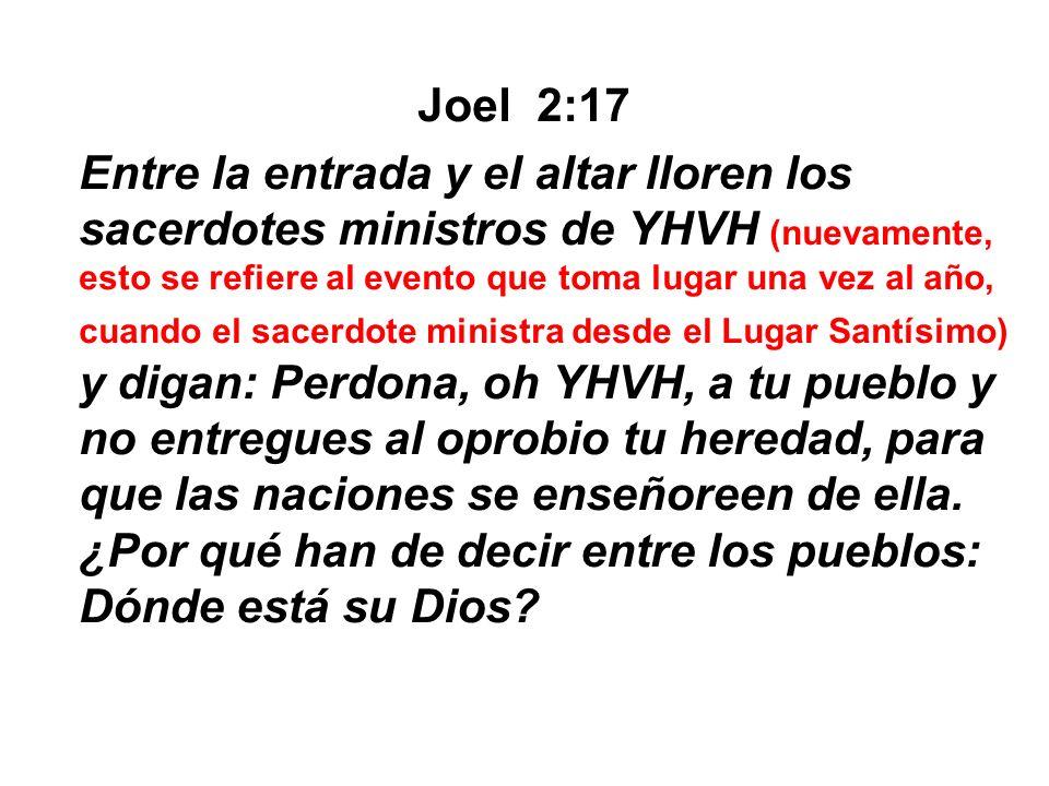 Joel 2:17