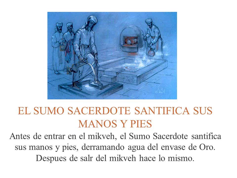 EL SUMO SACERDOTE SANTIFICA SUS MANOS Y PIES