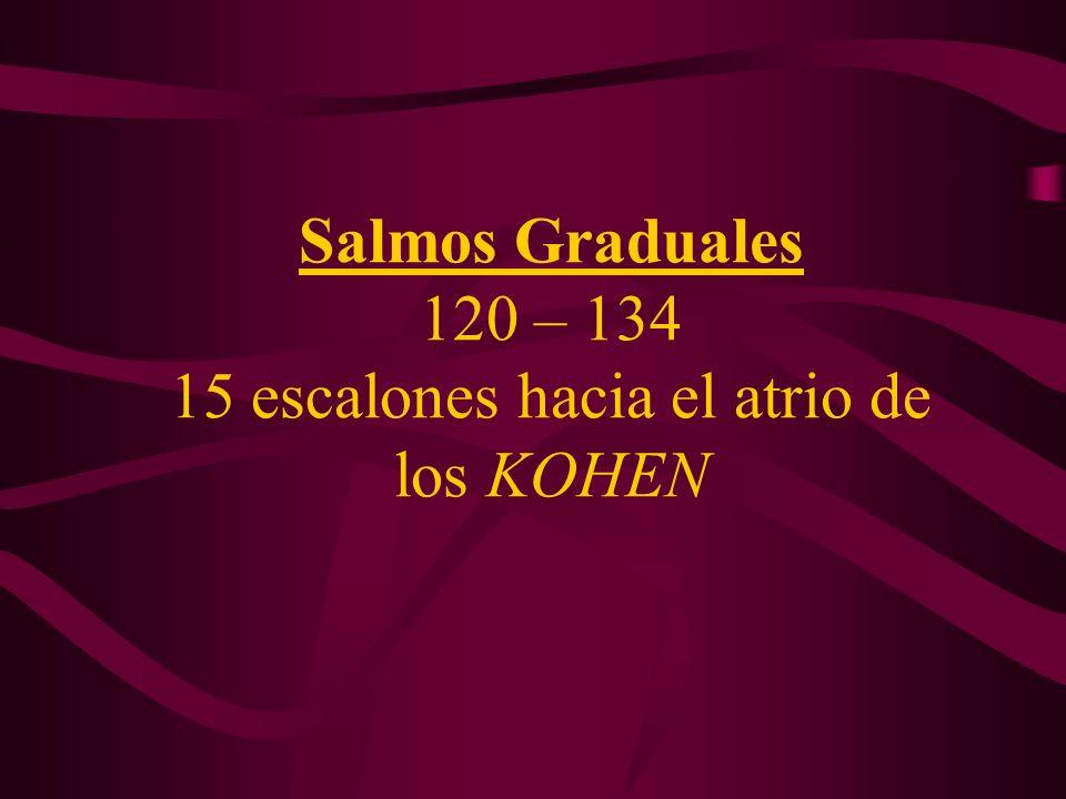 Salmos Graduales 120 – 134 15 escalones hacia el atrio de los KOHEN