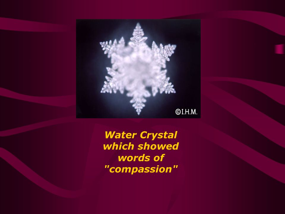 Water Crystal which showed words of compassion