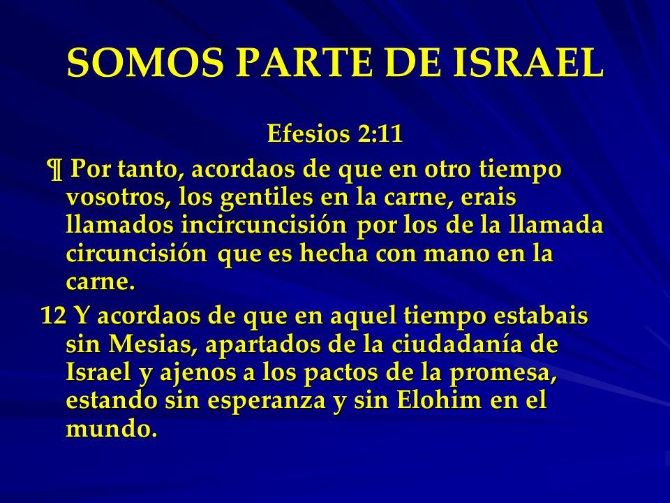 SOMOS PARTE DE ISRAEL Efesios 2:11