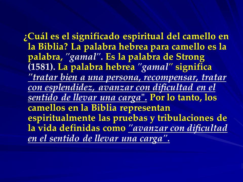 ¿Cuál es el significado espiritual del camello en la Biblia