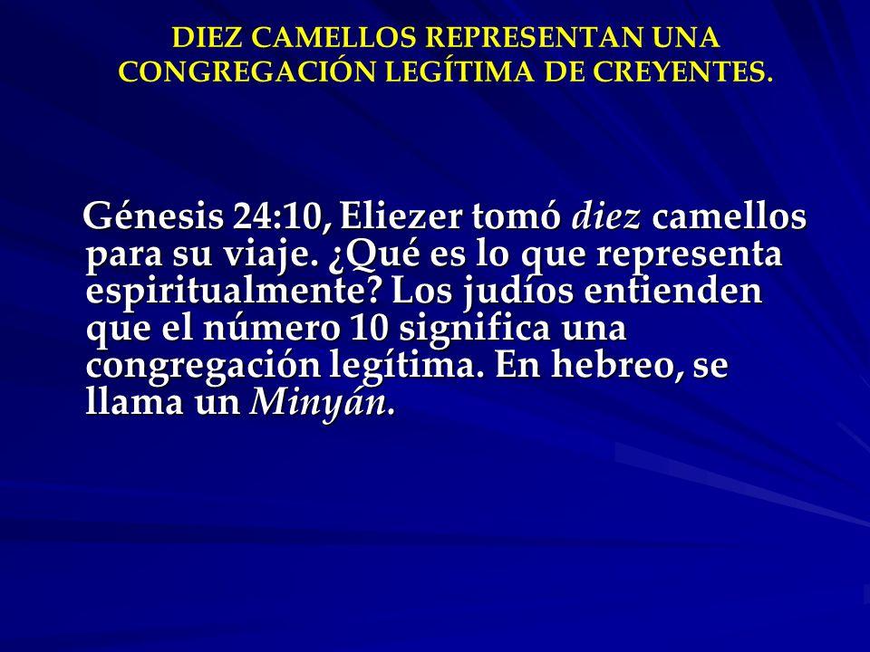 DIEZ CAMELLOS REPRESENTAN UNA CONGREGACIÓN LEGÍTIMA DE CREYENTES.