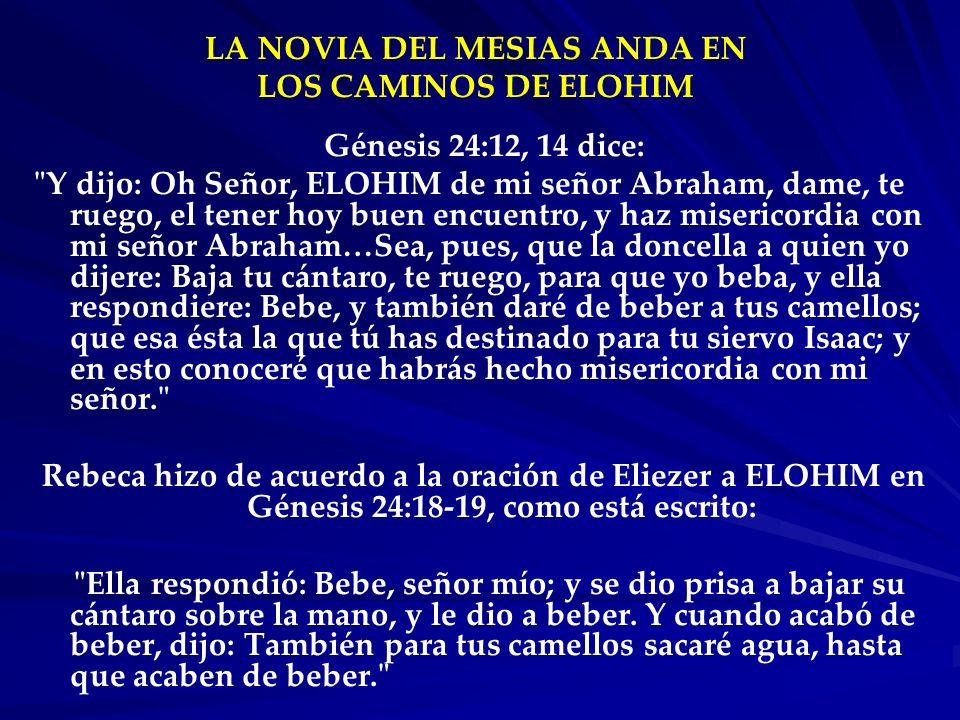 LA NOVIA DEL MESIAS ANDA EN LOS CAMINOS DE ELOHIM