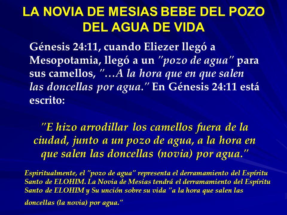LA NOVIA DE MESIAS BEBE DEL POZO DEL AGUA DE VIDA