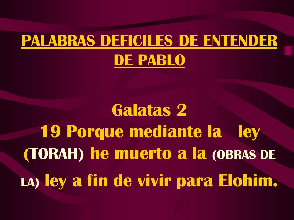 PALABRAS DEFICILES DE ENTENDER DE PABLO