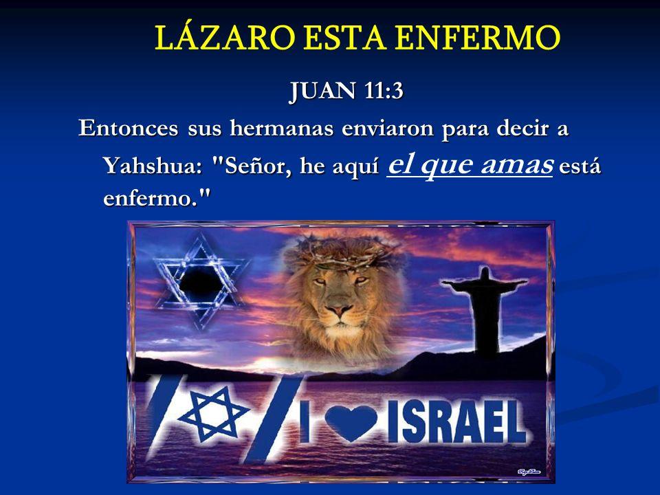LÁZARO ESTA ENFERMO JUAN 11:3
