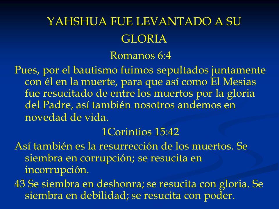 YAHSHUA FUE LEVANTADO A SU GLORIA