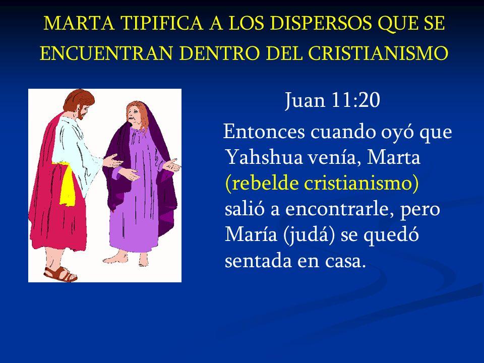 MARTA TIPIFICA A LOS DISPERSOS QUE SE ENCUENTRAN DENTRO DEL CRISTIANISMO