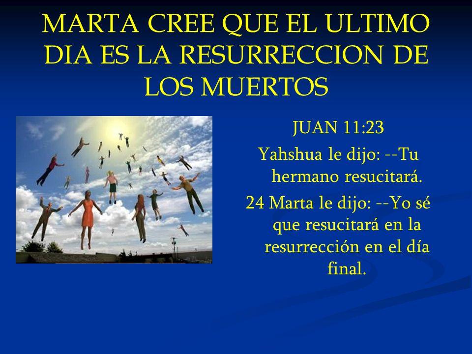 MARTA CREE QUE EL ULTIMO DIA ES LA RESURRECCION DE LOS MUERTOS