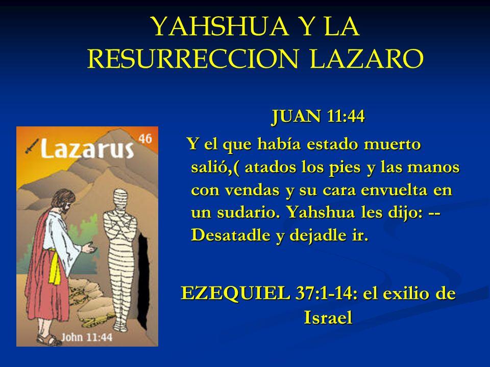 YAHSHUA Y LA RESURRECCION LAZARO