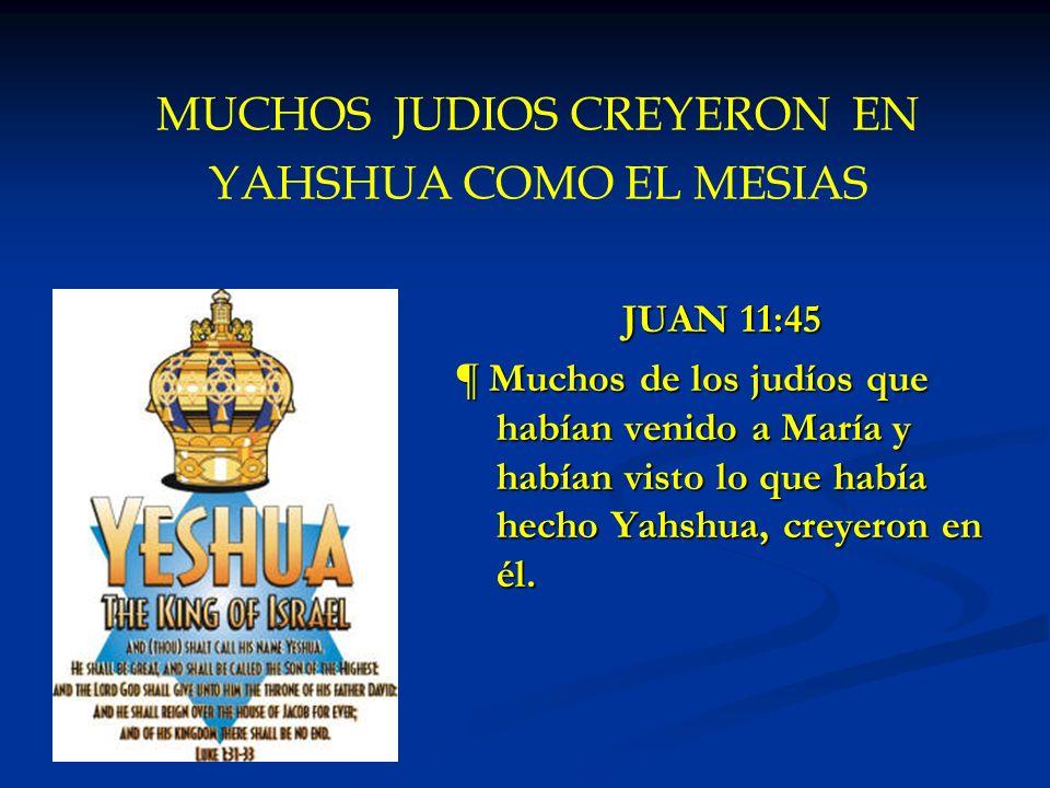 MUCHOS JUDIOS CREYERON EN YAHSHUA COMO EL MESIAS