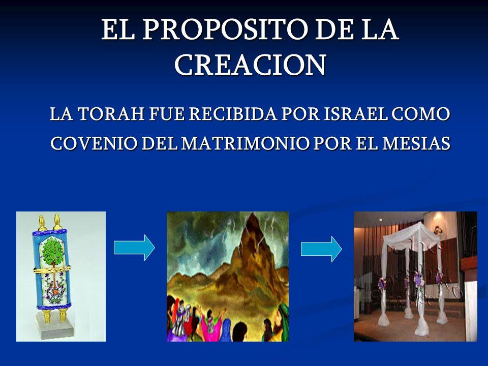 EL PROPOSITO DE LA CREACION LA TORAH FUE RECIBIDA POR ISRAEL COMO COVENIO DEL MATRIMONIO POR EL MESIAS