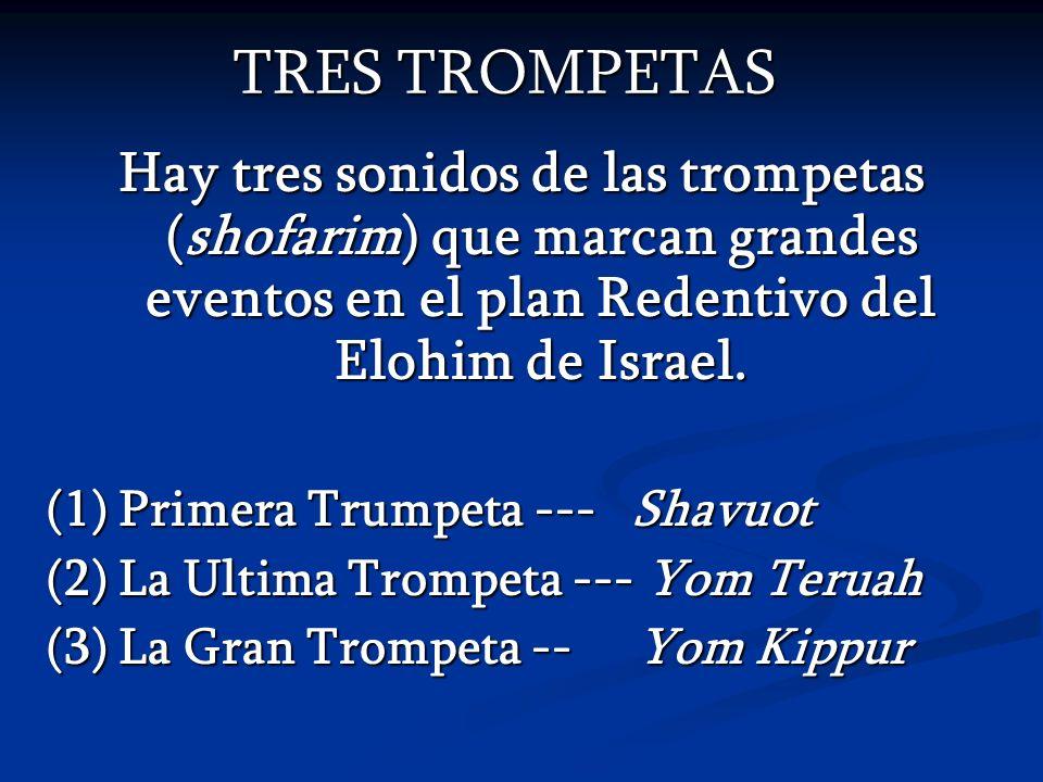TRES TROMPETAS Hay tres sonidos de las trompetas (shofarim) que marcan grandes eventos en el plan Redentivo del Elohim de Israel.