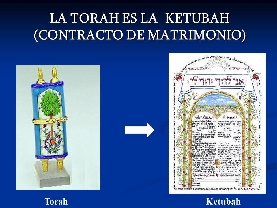 LA TORAH ES LA KETUBAH (CONTRACTO DE MATRIMONIO)