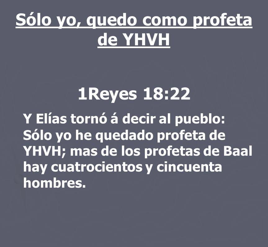 Sólo yo, quedo como profeta de YHVH