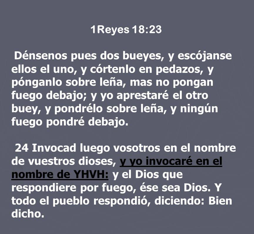 1Reyes 18:23