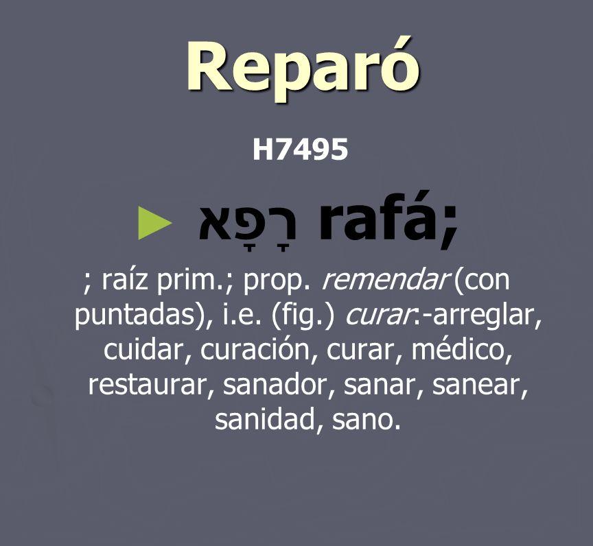 ReparóH7495. רָפָא rafá;