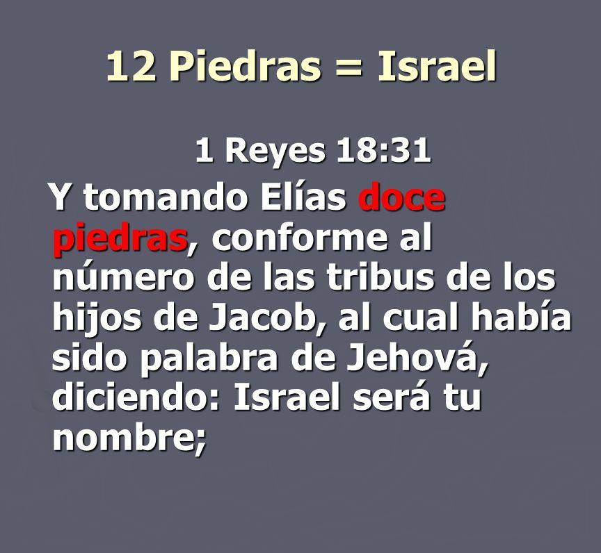 12 Piedras = Israel 1 Reyes 18:31.