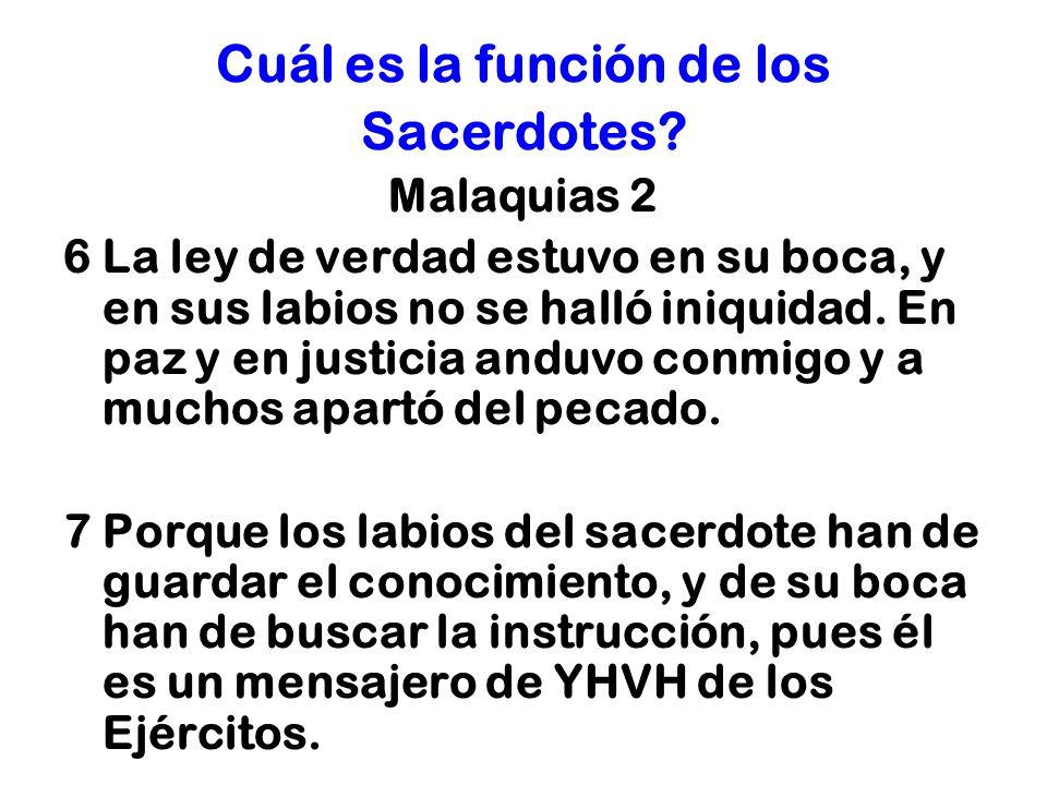 Cuál es la función de los Sacerdotes