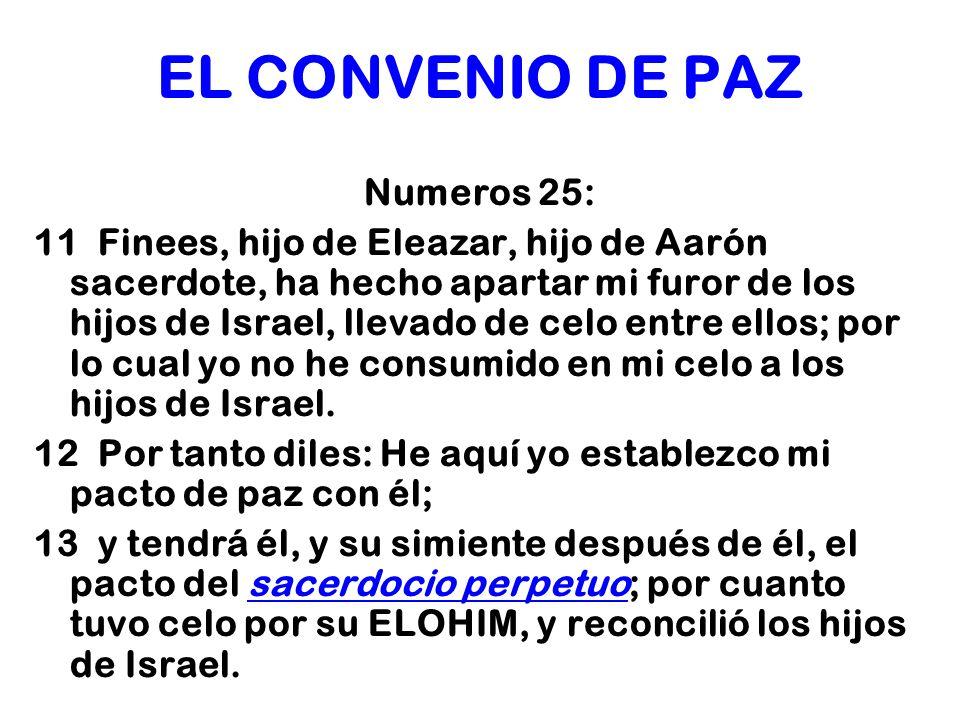 EL CONVENIO DE PAZ Numeros 25: