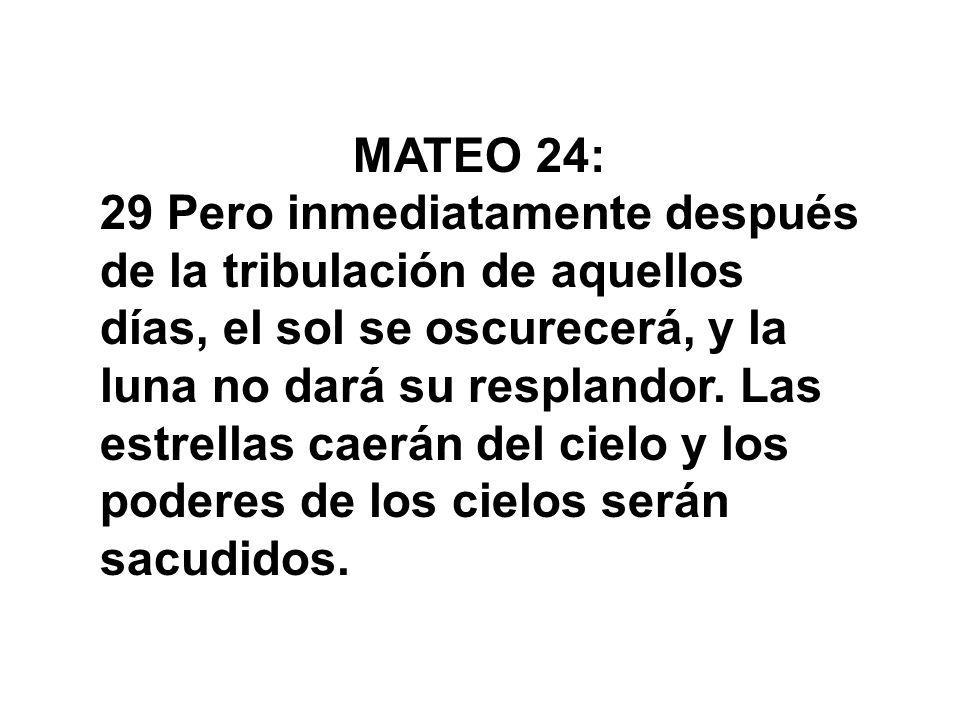 MATEO 24: