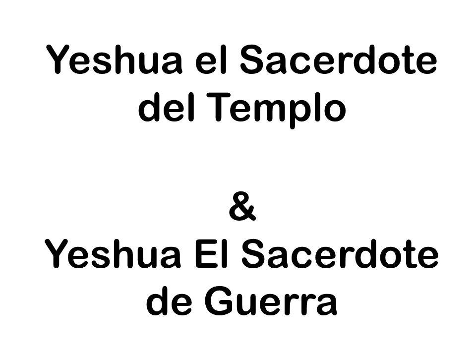 Yeshua el Sacerdote del Templo