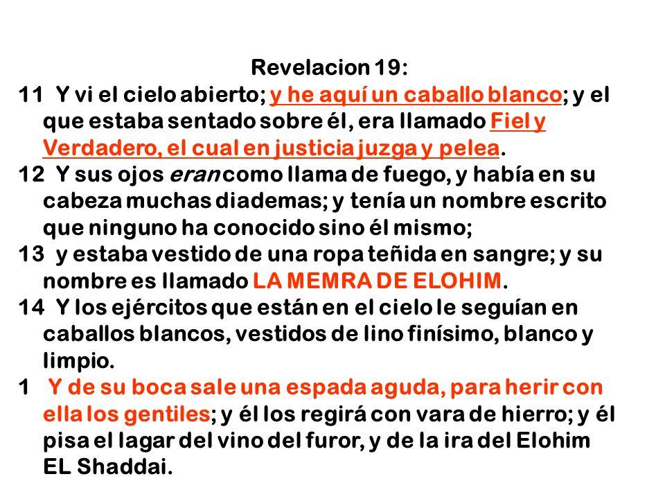 Revelacion 19: