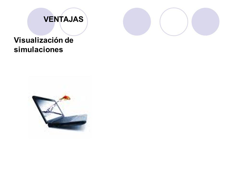 VENTAJAS Visualización de simulaciones