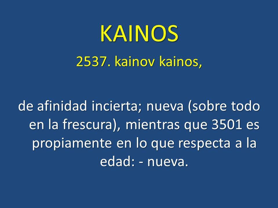 KAINOS 2537. kainov kainos,